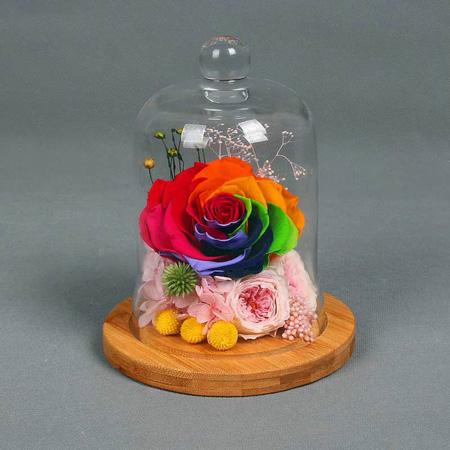 永生花:永生花 单朵彩虹玫瑰