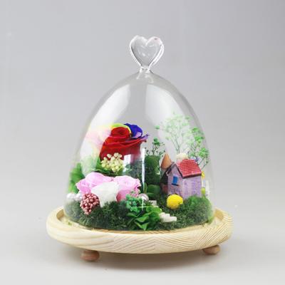南京永生花:保鲜花 玻璃罩梦幻家园