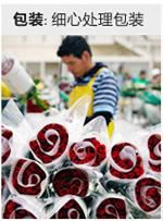锦州网上订花